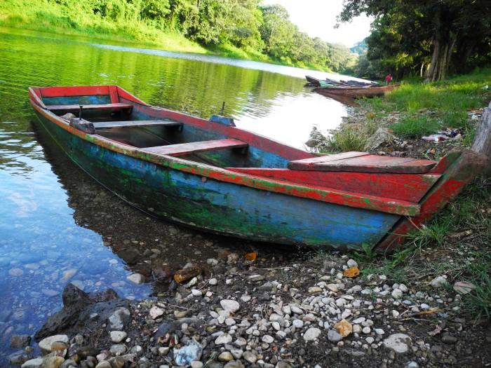 Almost Floating--Lago Yojoa, Honduras